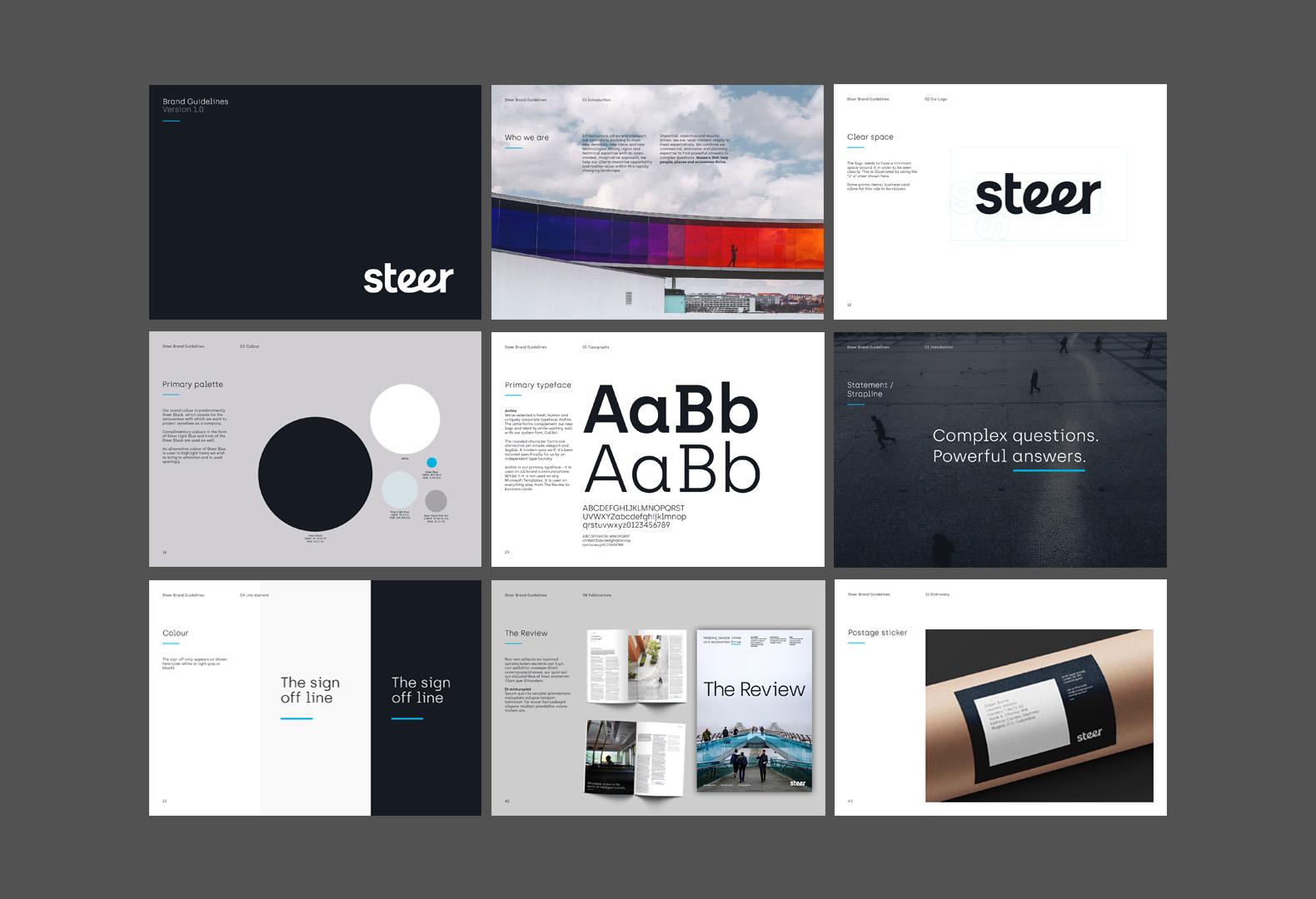 Steer_02